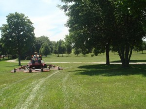 Mowing_5